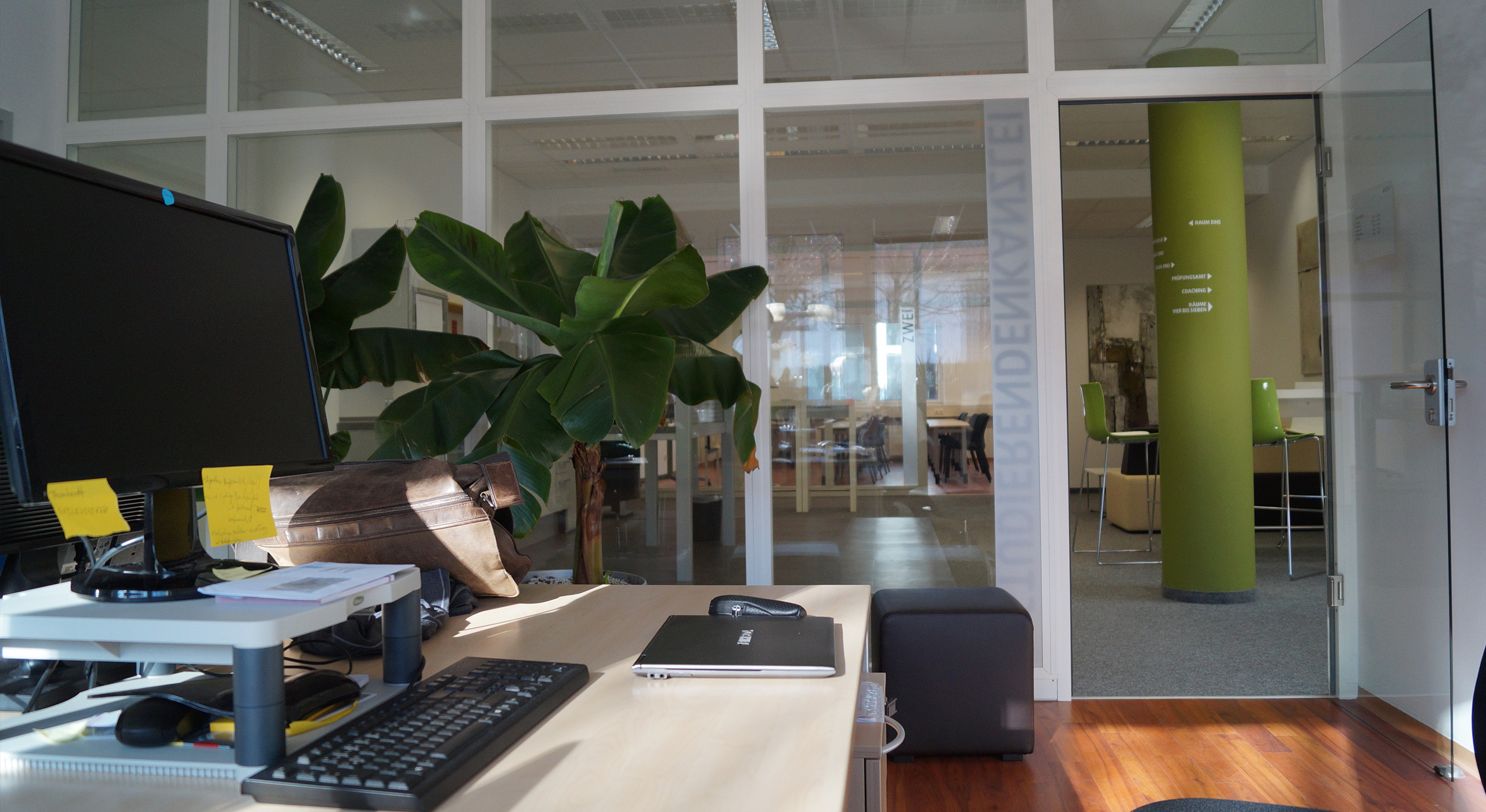 Büro mit PC und grosser Pflanze